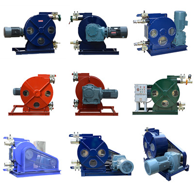 hose peristaltic pump head supplier